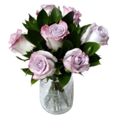 2-dozen-purple-roses-250x250-142